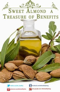 Sweet Almond a Treasure of Benefits ~ Bio Healthy Food Blog