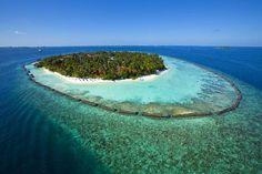 Kurumba Maldives Visit Maldives, Maldives Resort, Resort Spa, Maldives Travel, Best All Inclusive Resorts, Best Hotels, Maldives Destinations, Travel Destinations, Male City