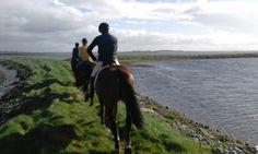 Small Island, Trekking, Horses, Adventure, Mountains, Website, Beach, Travel, Animals