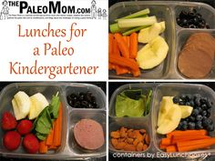 The Paleo Mom is a scientist turned stay-at-home mom who is taking on the monumental task of improving her family's nutrition and health.