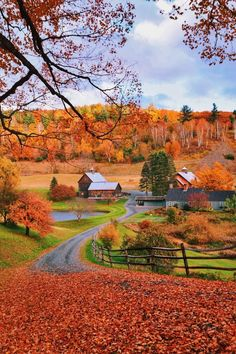 Woodstock, Vermont — by Rachel Samanyi. SLEEPY HOLLOW FARM- To visit Vermont in the Fall was a dream of mine. I am so happy that I was able to do just that. scenery Woodstock, Vermont — by Rachel Robert S Woodstock Vermont, Autumn Scenes, Autumn Aesthetic, Fall Pictures, Belle Photo, Beautiful Landscapes, Countryside, Nature Photography, Travel Photography
