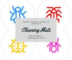 Best Carpet cleaning Brisbane,we are providing eco friendly services suitable for end of lease and move out .We service all Brisbane, Ipswich and Logan Quality Carpets, Stair Steps, Best Carpet, Carpet Cleaners, How To Clean Carpet, Carpet Runner, Brisbane, Cleaning, Stairways