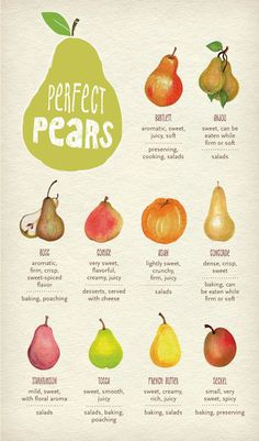Never use the wrong pear again! Pin now and save this beautiful guide to use for later! // #recipe #Thanksgiving #holiday: