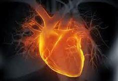 Христо от Лясковец: Притча за Дъното на Сърцето! Разкажи ми я искам да я чуя тази притча за дъното на сърцето.