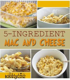 Whole Wheat 5-Ingredient Mac and Cheese Recipe - Thriving Home