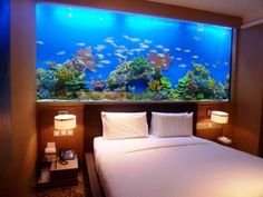 Huge aquarium takes the place of a headboard