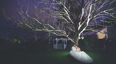 Bride Groom tree night wedding photography
