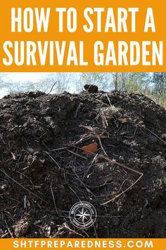 Learn how to start a survival garden and keep your family well-fed and happy! Survival, Garden, Lawn And Garden, Gardens, Outdoor, Home Landscaping, Tuin