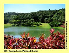 Parque INHOTIM (MG), Brazil