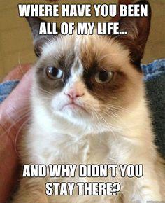 Please go back... - Grumpy Cat *