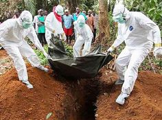 The total budget allocated for the campaign against Ebola disease is equivalent to of the costs of the election campaigns of the US presidential hopefuls. Ebola is a deadly virus;