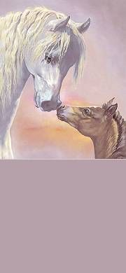 Free Cute Pet & Animal Stationery for Facebook, Twitter and Email - Horse, Mare, Colt, Sweet.
