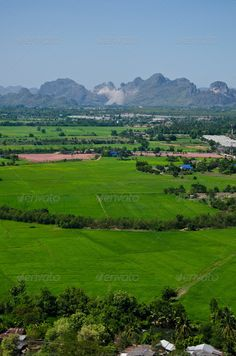 mountain view point rice farm Ratchaburi Thailand ...  agriculture, amazing, angle, asian, beautiful, beauty, colorful, country, countryside, cultivated, culture, farm, farms, field, fields, forest, grass, green, high, image, landscape, meadow, mono, mountain, natural, nature, outdoor, park, philippines, range, rice, road, rock, rural, scene, scenery, scenic, sea, season, sky, spring, summer, terrace, tranquil, travel, tree, tropical, valley, view, wide
