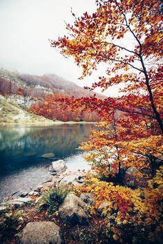http://blog.avisiblesignofmyown.com/post/99915997258/longing-for-autumn