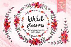 Wild flowers - Floral clip art by DigitalCloud on Creative Market