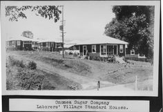 Onomea Sugar Plantation workers house 1926