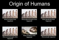 Great! But think about this... maybe God created the primates that humans evolved from. Let's stop hating each other's viewpoints, or at least try. Would it make life worse if we tried to be more understanding and compassionate as opposed to more finger-pointing and narrow-mindedness?