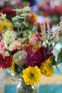 fall - marigold, zinnia, dahlia, celosia, snaps, gomphocarpus, mountain mint