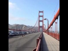 Yesterday two deer brought traffic on the Golden Gate Bridge to a halt!