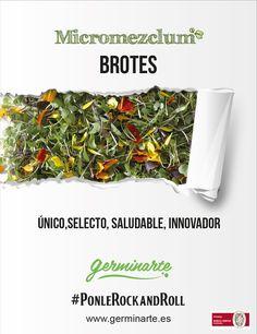 """El Micromezclum Premium es nuestra mezcla más completa. Infinidad de sabores en un mismo producto, herbáceos, picantes, dulces, amargos, etc. en un mismo producto. Es extremadamente versátil, puedes utilizarlo como un pequeño """"bouquet"""" siendo el remate ideal para dar personalidad a tus creaciones, tanto estéticamente como por su sabor. Chefs, Kale, Green Beans, Vegetables, Food, Salads, Dishes, Sweets, Red Cabbage"""