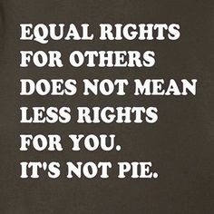 Image result for equality doesn't mean pie