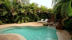 Tropical Pool Landscaping | New HEATED Pool with Tropical landscape!