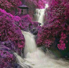 Gitgit waterfall: http://www.baligoldentour.com/git-git-waterfall.php