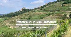 Etappe 1 des Welterbesteigs in der Wachau führt von Krems nach Dürnstein. Alle Highlights und Tipps für die schöne Wanderung an der Donau Vineyard, Highlights, Outdoor, Vine Yard, Ruins, Hiking, Outdoors, Luminizer, Vineyard Vines