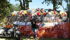 Cape Town Toy Run | November | Maynardville Park, Wynberg Activities In Cape Town, Indoor Outdoor, Competition, Dolores Park, November, Toy, Running, Travel, November Born
