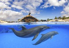 Tenerife, between our Top10 Travel Destinations Fall 2014, check it out!