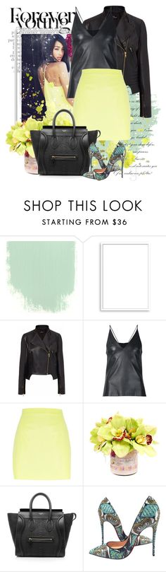 """""""take me out today"""" by kiera-van-witte ❤ liked on Polyvore featuring Bomedo, Nicole Coste, David Koma, River Island, Creative Displays, CÉLINE and Christian Louboutin"""
