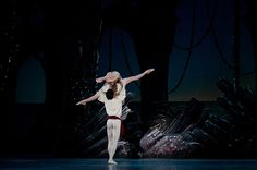 Photographic Memories: 2015-2016 Edition | Pittsburgh Ballet Theatre