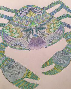 Millie Marotta Adult ColoringColouringColoring BooksCancerArts
