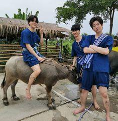 K Meme, Bright Pictures, 3 Friends, Meme Faces, My Sunshine, Squad, Thailand, Daddy, Boys