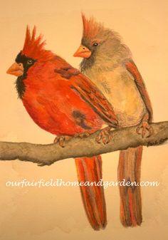 Image of Cardinal Pa