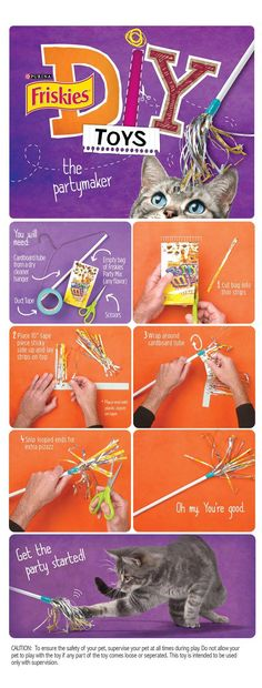 """Friskies® DIY Homemade Cat Toy: """"The Partymaker"""""""
