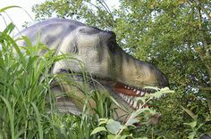 Gullivers Land Dinosaur and Farm Park