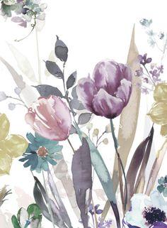 Harrison Ripley - Mono Tulips & Mixed Floral .jpg