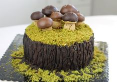 Sweet Recipes, Cake Recipes, Nature Cake, Birthday Cake For Mom, Frog Cakes, Cute Desserts, Sweets Cake, Pastry Cake, Cake Decorating Tips