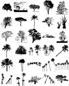 vector | Free Tree Silhouette Vectors | snap2objects