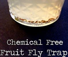 Out of Alabaster: DIY Fruit Fly Traps (STUPID EASY) I used apple cider vinegar with Gain green apple scented dish soap. First 2 fruit flies were dead in less than 5 minutes, with dozens swarming the traps! Household Pests, Household Chores, Household Tips, Diy Cleaners, Cleaners Homemade, Homemade Cleaning Supplies, Cleaning Hacks, All You Need Is, Diy Fruit Fly Trap