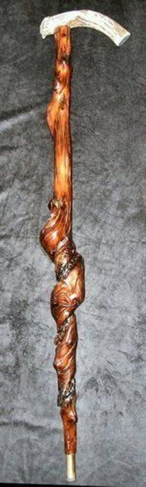 A Naturally Twisted Walking Cane with Scrimshaw Art on Elephant Ivory of a Black Labrador Dog