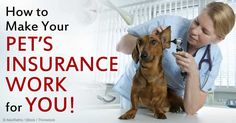 Here are five important things every pet owner should consider before investing in health insurance for furry family members. http://healthypets.mercola.com/sites/healthypets/archive/2014/10/18/pet-health-insurance.aspx