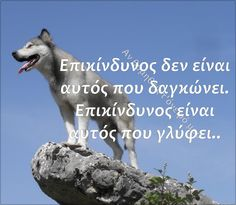 Greek Quotes, Husky, Romance, Wisdom, Relationship, Sayings, Words, Animals, Romance Film