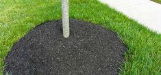 overmulching Wood Chip Mulch, Types Of Mulch, Rubber Mulch, Organic Mulch, Crushed Stone, Weed Seeds, Landscape Fabric, Garden Beds