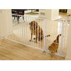 This smart gate has an inner gate for smaller access.  Great way to partition a section of your home.  See several to choose from at markspetneeds.com.