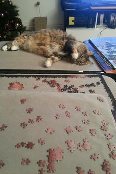 My sweet kitty Tequila is helping me with my puzzle :)