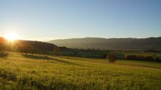 Austria, Vineyard, Mountains, Nature, Travel, Outdoor, Beautiful, Outdoors, Naturaleza