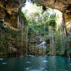 South American waterhole