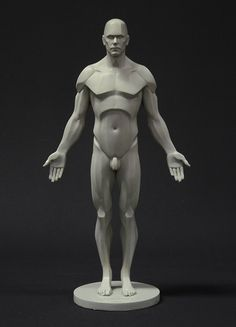 The male planar reference figure is available and ready to go  https://shop.3dtotal.com/figures/anatomy-figure/male-planar-figure.html
